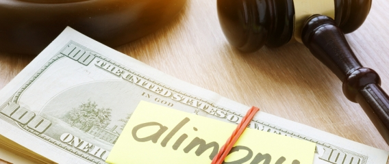 Factors That Decrease The Likelihood Of Receiving Alimony In A Michigan Divorce
