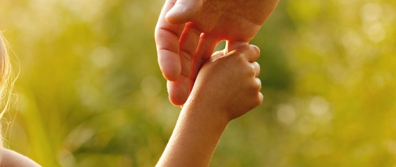 Handling Child Support In Joint Custody Situations In Michigan