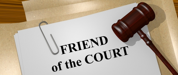 Common Myths Regarding Friend Of The Court