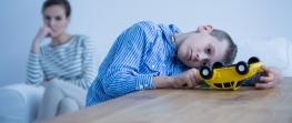 Understanding Parent Alienation And Divorce